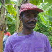 A worker from the nursery where Hope for Haiti's thousands of seedlings are cultivated