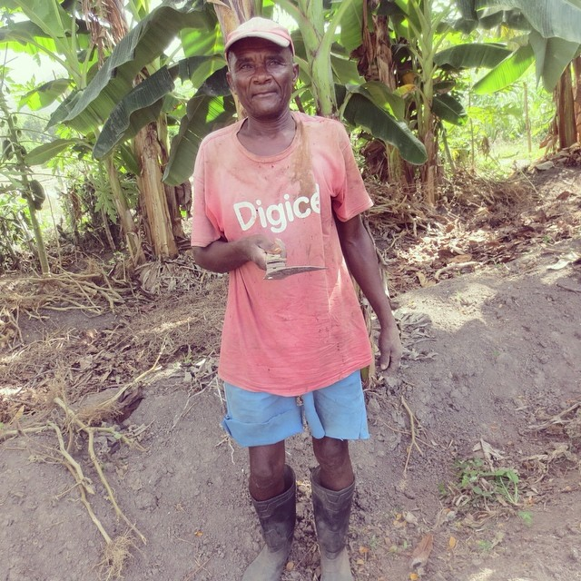 Luc aldophe is one of the dedicated farmers in our community garden. he loves gardening and is so happy to be helping children in the community! #hopeforhaitifl #haiti #connecthealempower #farming #farmersfirst #localimpact
