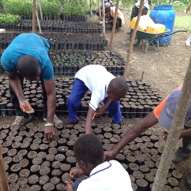 Planting with the students! #earthday2015 #haiti #hopeforhaiti #farmersfirst