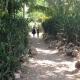 Walking home from school! #haiti #hopeforhaiti #educationforall #schoolrocks