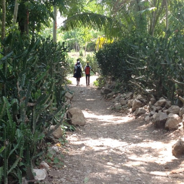 Walking home from school! #haiti #hopeforhaiti #educationforall #schoolrocks