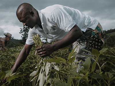 Haiti Infrastructure Projects - Land Conservation   Hope For Haiti